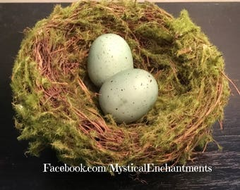 Mossy Spring Birds nest with bird eggs- 3 1/2-4""