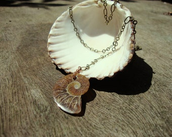Ammonite fossil shell lariat necklace, fossilised shell necklace, boho necklace, drop necklace, ammonite pendant