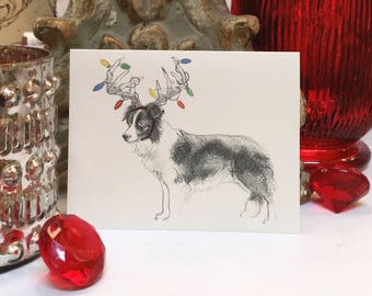 Boxed Border Collie Holiday Cards