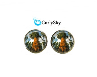 Forest Studs Big Tree Studs Elk Wood Fores Studs Old Forest Studs Forest Tree Studs Big Tree Jewelry Big Tree Earrings Forest Tree Studs