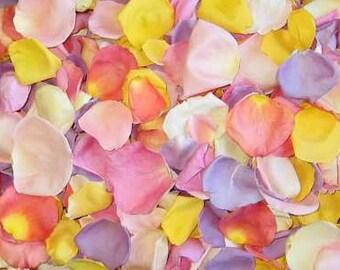 Scented or Unscented WEDDING TOSS PETALS Pastel Petal Mix Fresh Freeze Dried, Bio-degradable, Real Rose Petals, Wedding Colors, Bulk Orders