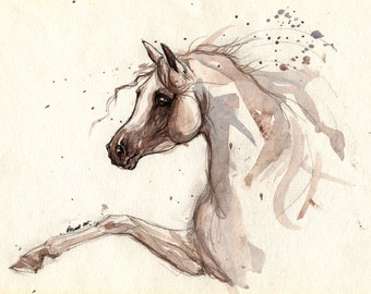 Arabian horse original pen and watercolour painting