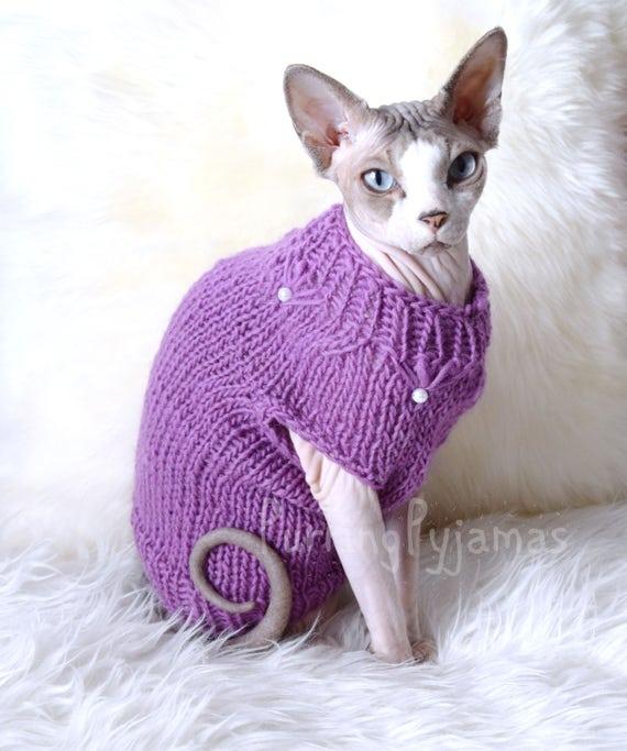 Pull chat, sphynx pull, vêtements de chat, sphynx vêtements, pull pour les  sphynx, pour chat, pull chat sphynx, sphynx, vêtements pour animaux de  compagnie,