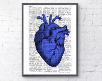 Art Print Blue Heart anatomical   Print SKA029