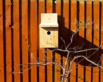 Bird Nest Box - suitable for Blue Tits and Great Tits