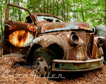 1948 Studebaker Rusty Truck in the woods Photograph
