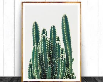 Cactus Wall Art, Cacti Print, Printable Art, Southwestern Room Decor, Digital Download, Large Cactus Printable, Nursery Wall Art, Boho Print