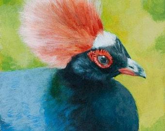 Crested Wood Partridge - Giclée Print of original Acrylic Painting by Spring Hofeldt