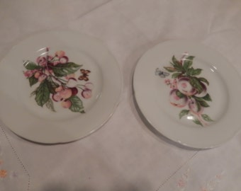 FRANCE LIMOGES FRUIT Plates