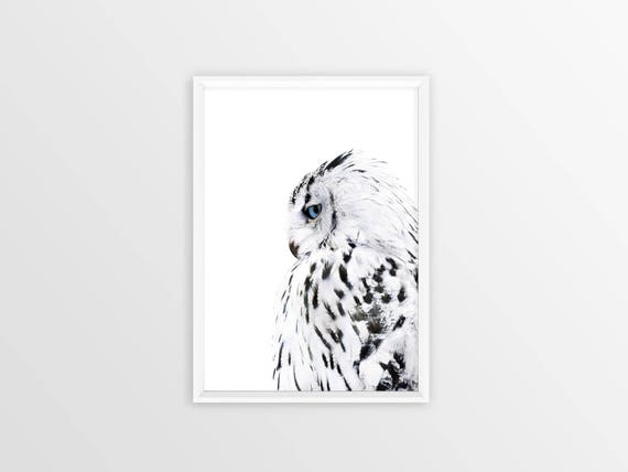 White owl print owl gifts black and white scandinavian