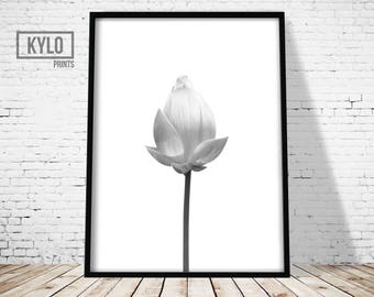 Flower Print, Digital Print, Wall Art, Printable art, Photography Print, Flower wall art, Home Decor, Wall Decor, Black and White, Flower