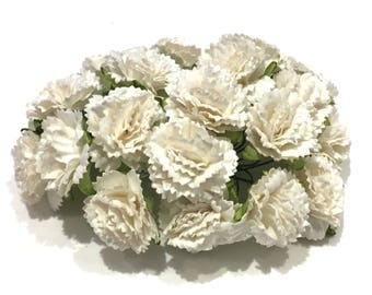 Ivory Carnations Pc005