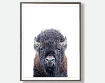 Buffalo Prints, Instant Bison Wall art, Buffalo Print, Buffalo Wall Art, Trending Print, Artwork, Printable Large Poster, Modern Wall Art