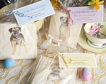 Little bag of Border Terrier cards. Multi pack of Cards with a Border Terrier. six border terrier cards. hand made cards. cards with a dog
