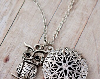 Essential Oil Diffuser Necklace, Aromatherapy Locket, Essential Oil Jewelry, Stainless Steel Oil Locket, Aromatherapy Necklace, Owl Necklace