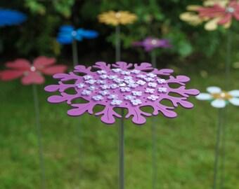 Pollination Flower Stem - Field Scabious