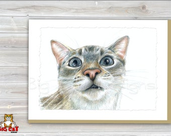 CAT CARD. OMG  -Siamese Cat is Amazed- Cat Greeting Card.  5X7 Framable Card.  Siamese Cat Art.  Funny Siamese Cat.  Siamese Cat Portrait.