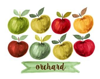 apples clipart, fruit clipart, watercolor fruit clipart, watercolor apple clipart,ROSABEBE