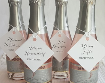 Printed Wedding Place Cards Tags    Printed Name Card   Wedding Escort Card - Set of 74 -  Mini Champagne Tags