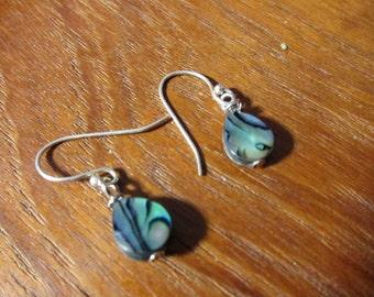 ABALONE TEARDROP Shell Earrings