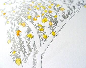 Lemon Tree Letterpress & Watercolor Print- Kitchen Art