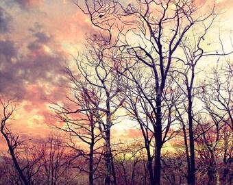 Chipmunk Tree - animal spirit tree - surreal fantasy visionary art