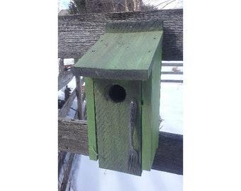 Green Bluebird House