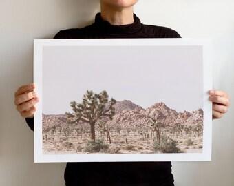 Art Print Dry Land No 5901, Landscape California, Joshua Tree National Park