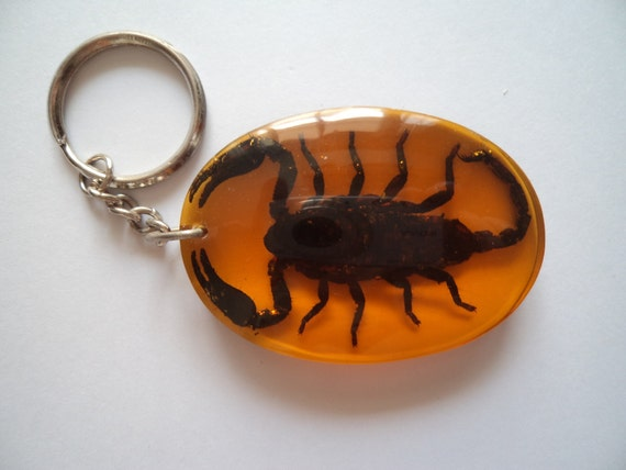 Scorpion asiatique v ritable porte cl s palamnaersus - Porte asiatique ...