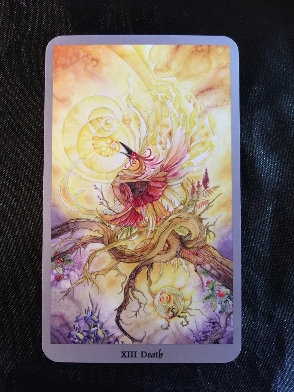 One Card psychic Tarot Reading Tarot Divination New Age