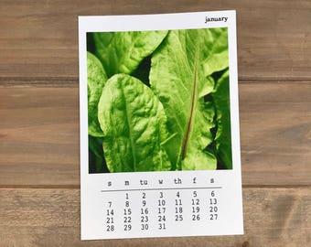 CLEARANCE - LOCAL HARVEST 2018 Desk Calendar