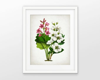 Pink And White Flower Print - Flower Decor - Botanical Print - Colorful Flower Decor - Flower Art - Single Print #1666 - INSTANT DOWNLOAD