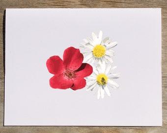 Flower notecard, daisy card, flower greeting card