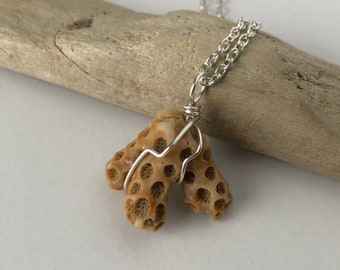 Seashell Fragment Necklace