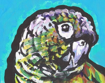 "conure PARROT bird portriat print of pop art painting 13x19"" fun bright colorful pet wall art"