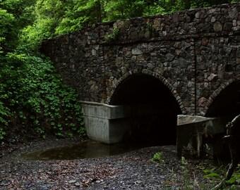 Bridge in the Woods Print