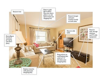 Home Staging Services / Affordable Living Room e-Design