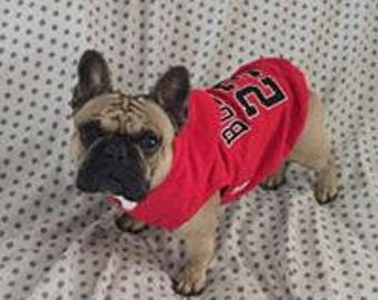 BULLS Hoodie embroidered,tailor made.For every  dog size