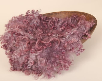 Curly Wool layer, Photo Prop newborns and babies, Lavender
