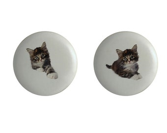 Cats Kittens Kitchen Knobs Drawer Pulls Set of 4