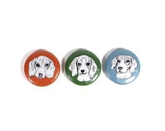 Beagle magnet set, dog magnets, puppy magnets