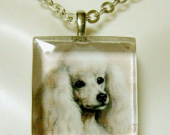 White poodle pendant and chain - DGP01-100