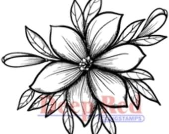 Deep Red Rubber Stamp Lily Blossom Flower Garden Bloom