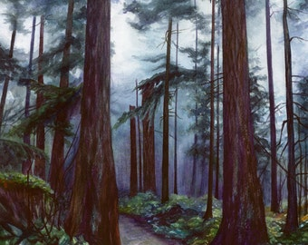 Northwest Watercolor Print, Old Growth Forest Watercolor, Jacqueline Tribble, 8x10, 11x14, PNW, Northwest art, Evergreens, Pacific Northwest