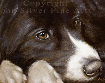 Aceo Dog Print, Border Collie. From an Original Painting by JOHN SILVER. Personally signed. BC266AC
