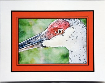 Watercolor Paintings of Sandhill Cranes Posing Just for You - Notecards