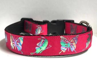 """1"""" Foil Butterflies on pink Collar"""