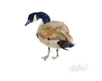 "Canadian Goose Giclee Print 10x10"" Watercolor Print Animal Art Bird Art Prints Wall decor Art prints Goose Wildlife Art bird watercolor"