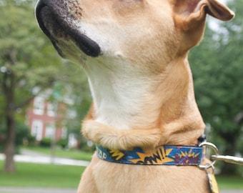 Comic dog collar, blue dog collar, large dog collar, fun dog collar, dog collar for girl, dog collar for boy, boy dog collar, comic words