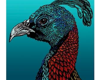 Wall Art, Giclee Art Print A4 - Himalayan Monal Pheasant - Signed